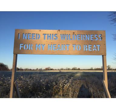 Adam Bridgland - I Need This Wilderness - courtesy of TAG Fine Arts