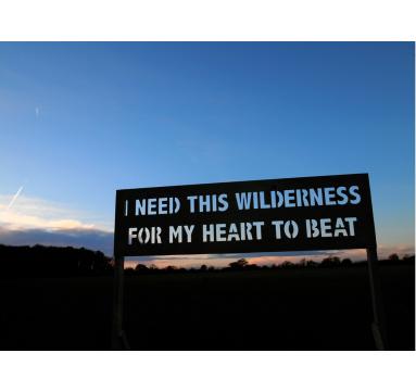 Adam Bridgland - I Need This Wilderness (Print) - courtesy of TAG Fine Arts