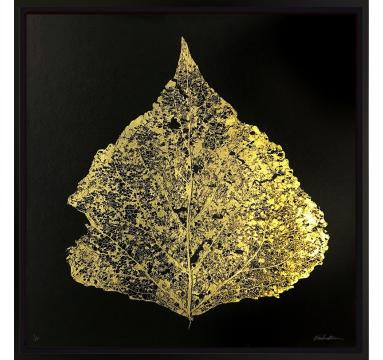 Ewan David Eason - Gold Leaf I - courtesy of TAG Fine Arts