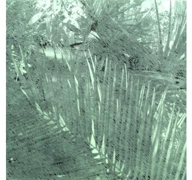 Katsutoshi Yuasa - Tristes Tropiques #1 - courtesy of TAG Fine Arts