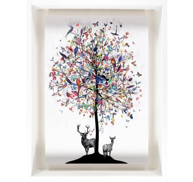 Kristjana S Williams - International Tree  Marvellous Spatuletail - courtesy of TAG Fine Arts
