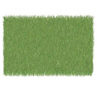 Simon Schofield - Grass Lawn 5 - courtesy of TAG Fine Arts