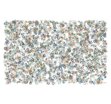 Simon Schofield - Tokyo Flowers - courtesy of TAG Fine Arts