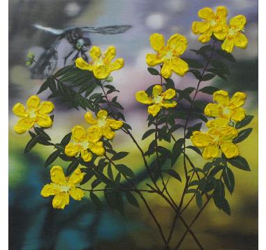 Sumiko Seki - Dragonfly & Yellow Rosa  - courtesy of TAG Fine Arts