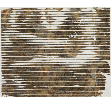 Thomas Leveritt - Cairene 20 - courtesy of TAG Fine Arts
