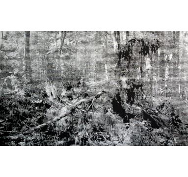 Katsu Yuasa - Ilmatar - courtesy of TAG Fine Arts